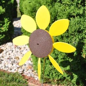 Full Bloom Spinning Daisy | Sunflower